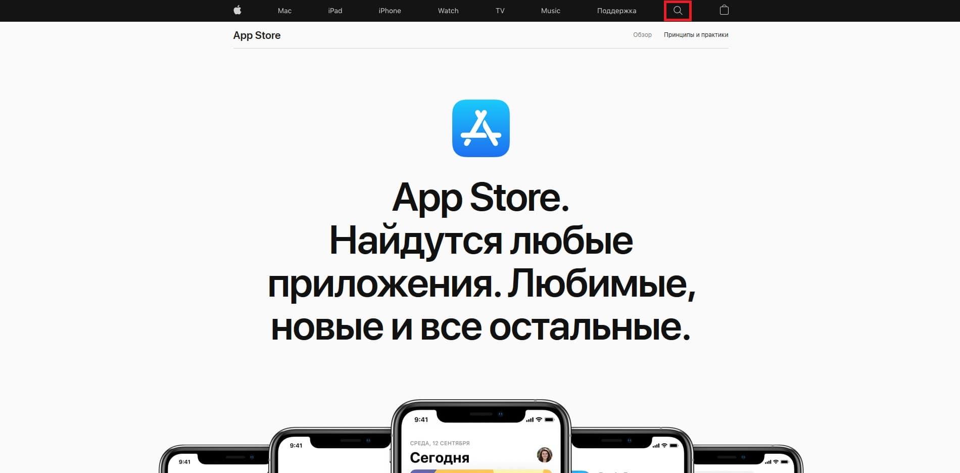 Панель поиска приложений в App Store